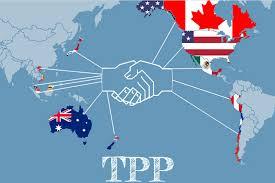 Thách thức sở hữu trí tuệ trong TPP